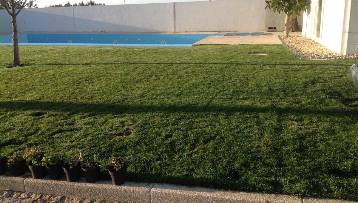 Jardim dia 2
